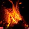 Feuerkorb mieten / Feuerkorb Verleih