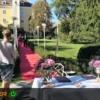 Hochzeitsteppich mieten