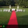 Hochzeitsteppich ausleihen